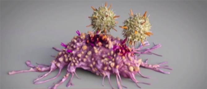 Σπουδαία ανακάλυψη δίνει ελπίδα για θεραπεία του καρκίνου