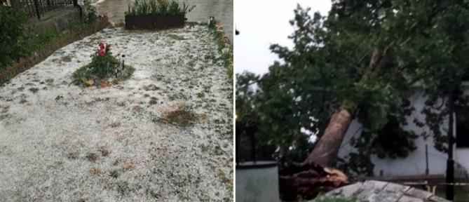 Κοζάνη: Χαλάζι, πλημμύρες και πτώση δέντρου σε σπίτι (εικόνες)