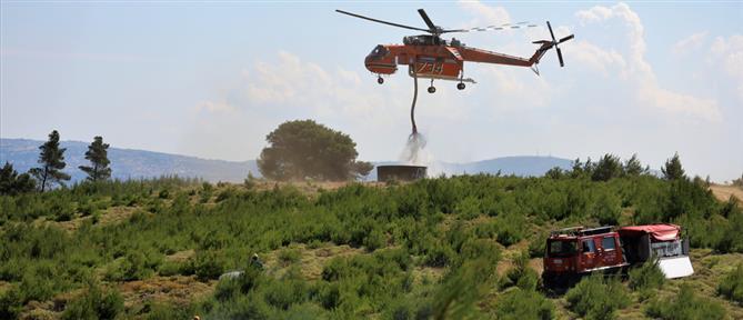 Πυροσβεστική - Δια Πυρός 2021: Εντυπωσιακές εικόνες από την ετήσια μεγάλη άσκηση