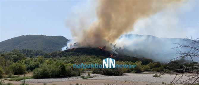 Φωτιά στο Αγρίνιο: Εκκένωση σε Παραδείσι και Περπάτη (εικόνες)
