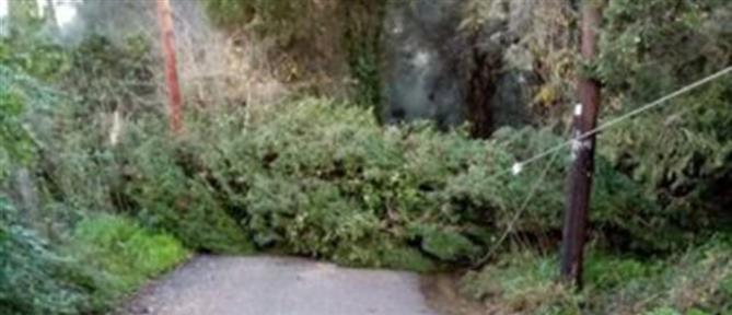 Κέρκυρα: Σφοδρή καταιγίδα έπληξε το νησί (εικόνες)
