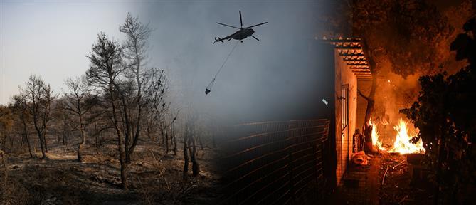 Αδιάκοπη η μάχη με τις φλόγες στην Εύβοια