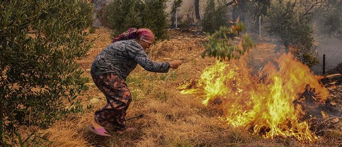 Φωτιές στην Τουρκία: Κι άλλοι νεκροί στις πυρκαγιές (εικόνες)