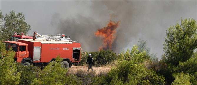 Φωτιά στην Κορινθία: συνεχίζεται η μάχη με τις φλόγες (εικόνες)