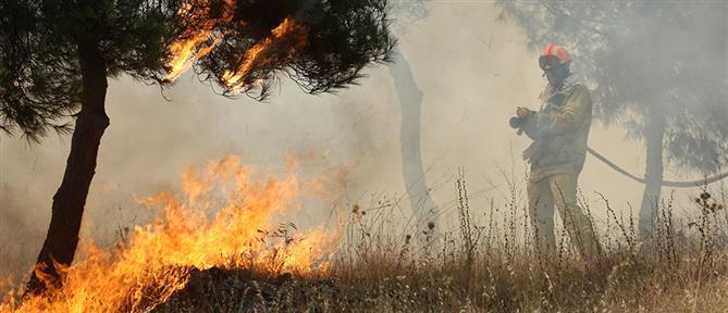 Υψηλός κίνδυνος πυρκαγιάς σε πολλές περιοχές την Τετάρτη (χάρτης)