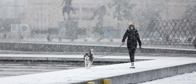 """""""Λέανδρος"""": ψύχος, παγετός και χιόνια την Κυριακή"""