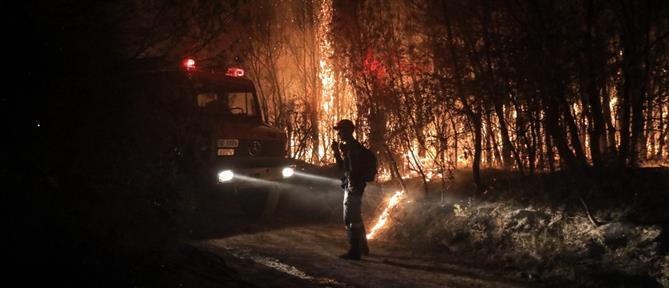 """Φωτιά στην Αχαΐα: Ολονύχτια """"μάχη"""" στο πύρινο μέτωπο (εικόνες)"""