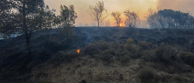 Φωτιά στη Ρόδο: Πύρινη κόλαση στο νησί