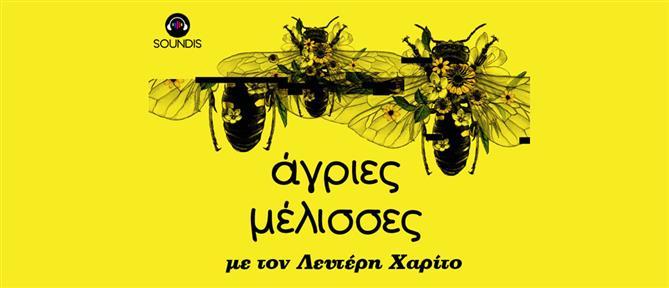 "SOUNDIS - ""Άγριες Μέλισσες"": νέο podcast με τις αδελφές Σταμίρη και τον Λευτέρη Χαρίτο"