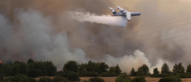 Φωτιά στην Βαρυμπόμπη: Έκλεισε η εθνική Αθηνών – Λαμίας (εικόνες)