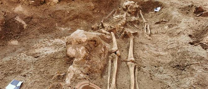 Κροατία: Ανακαλύφθηκε νεκρόπολη σε κήπο μπαρόκ παλατιού (εικόνες)