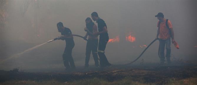 Χρυσοχοΐδης - Χαρδαλιάς: 81 πυρκαγιές σε ένα 24ωρο - Μέλημά μας η ανθρώπινη ζωή