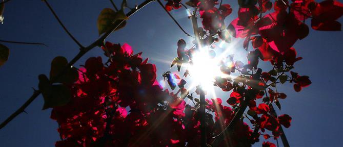 Καιρός: ηλιοφάνεια και άνοδος της θερμοκρασίας τη Δευτέρα