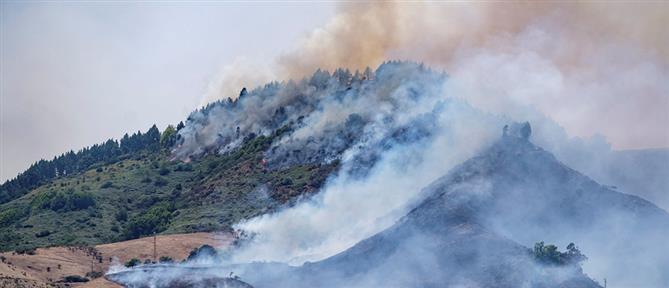 Φωτιά στην Γκραν Κανάρια: γιγαντιαία επιχείρηση εκκένωσης (εικόνες)