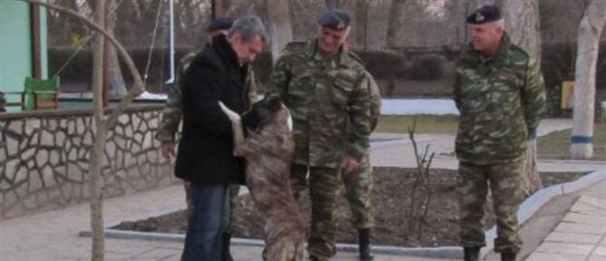 """Σκύλος που κακοποιήθηκε σε τουρκικό φυλάκιο έγινε φύλακας-""""άγγελος"""" για Έλληνες στρατιωτικούς"""