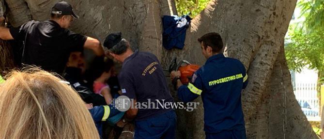 """Επιχείρηση πυροσβεστών για αγόρι που """"σφήνωσε"""" σε δέντρο (εικόνες)"""