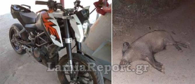 Μηχανή συγκρούστηκε με αγριογούρουνο (εικόνες)