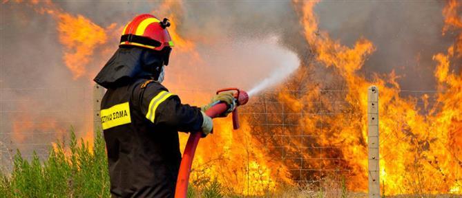 """""""Συναγερμός"""" για πυρκαγιά στην Παιανία"""