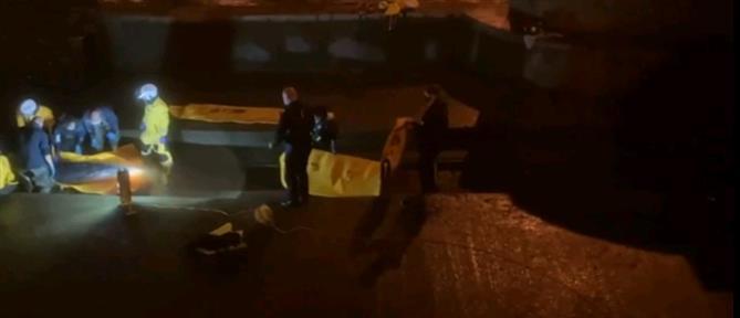 Λονδίνο: Διάσωση φάλαινας από τον Τάμεση (βίντεο)