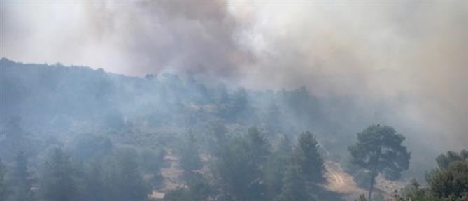 Μεγάλη φωτιά στην Κύπρο (εικόνες)