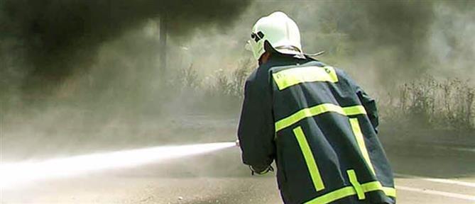 Στις φλόγες δασική έκταση στην Κόνιτσα