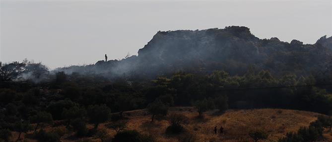 Φωτιά στην Κερατέα: Κοντά στον οικισμό Λάκκα οι φλόγες (εικόνες)