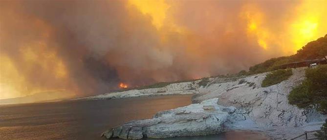 Φωτιά στη Μασσαλία: Τουρίστες κατέφυγαν στην παραλία για να σωθούν από τις φλόγες