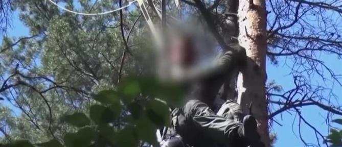 Eurofighter: Καρέ - καρέ η διάσωση του πιλότου που βρέθηκε πάνω σε δέντρο (βίντεο)
